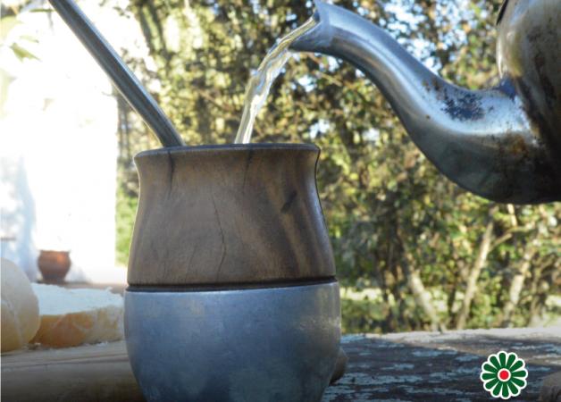 La Yerba Mate: El mejor antioxidante