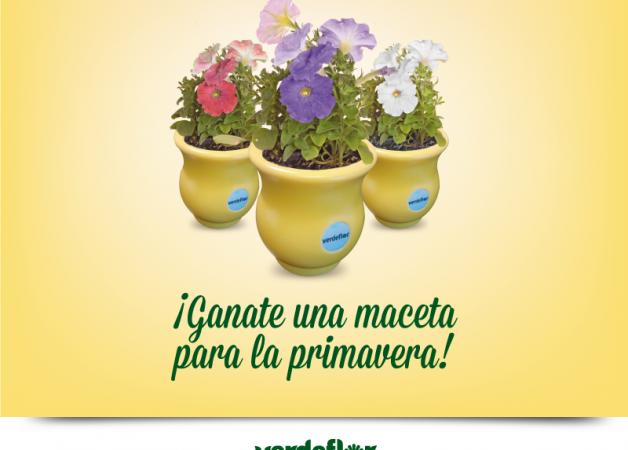 Concurso: Es más Primavera con Verdeflor