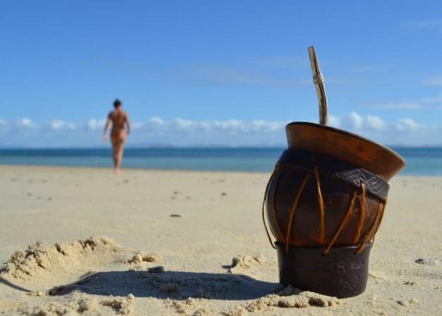 La yerba mate recorre la costa argentina